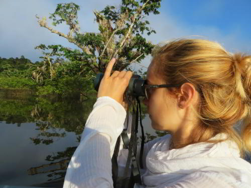 Birdwatching by visitors of the Amazon in Ecuador